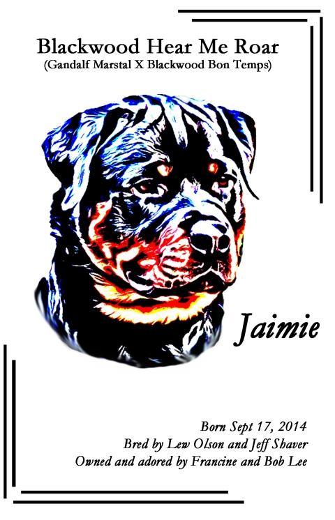 2016-mrc-summer-newsletter-jaimie-ad-final
