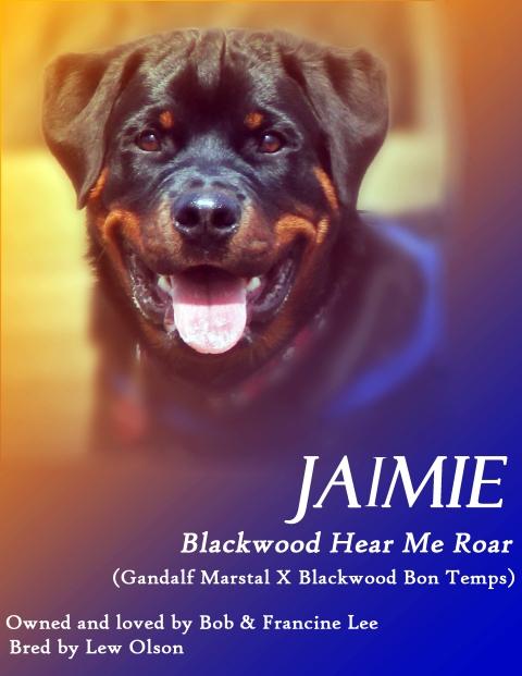 Presenting Jaimie
